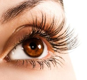Beauty Tip Tuesday's : Easy Eyelash Growth Serum